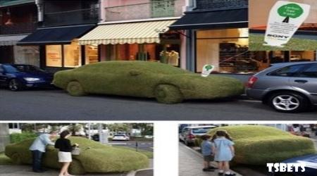 Carro de grama